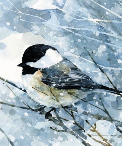 Snow Bird.png
